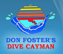 Don Foster's Dive